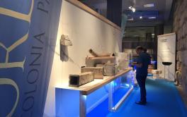 5.600 personas han visitado la exposición 'AQVA-MA'AN-AGUA', que hoy cierra sus puertas después de tres meses